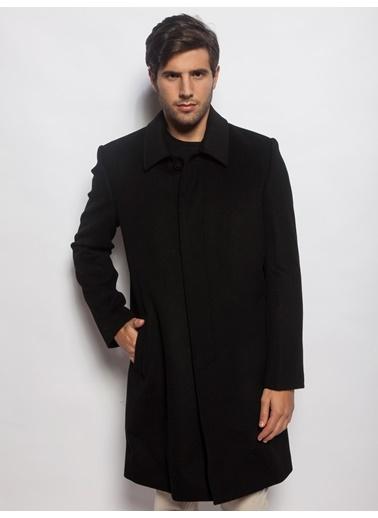 Palto-Silk and Cashmere